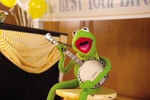 Kermit 02