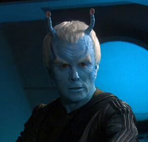 Focus on Andorians