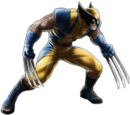 Yellow and Blue Wolverine