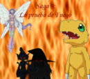 Saga 009: La prueba de Fuego