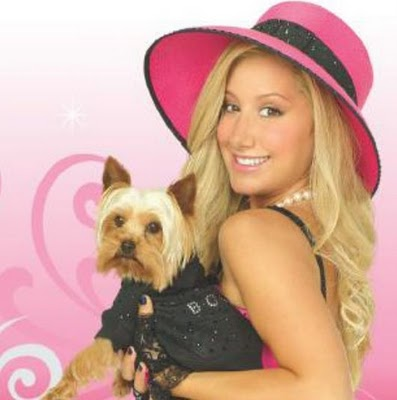 What Is The Name Of Sharpay S Dog In Hsm