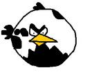 Unplayable Birds