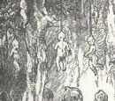 Venusian Humanoids