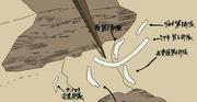 Mapa de Despliegue Inicial de las Divisiones de la Gran Alianza Shinobi