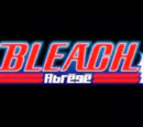 Bleach Abrégé One Shot