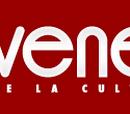 Galerie Site Internet