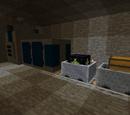Tunnel Bore