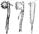 Armamento Hombres Lagarto