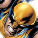 Wolverine Main Page Icon.jpg