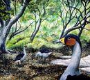 Птицы миоценовой эпохи