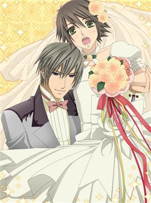 Image - Fanfiction-animes-junjou-romantica-o-casamento ...