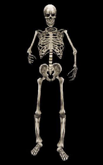 Daedric Armor Image - Skeleton MW.pn...