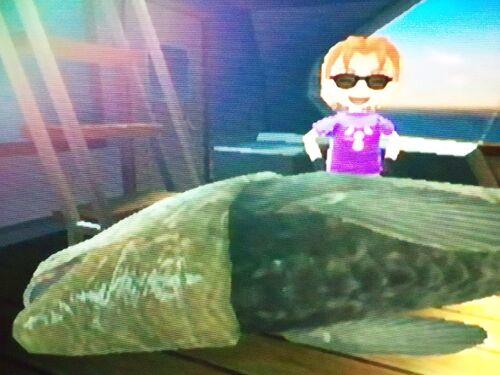 Dunkleosteus Wii Fishing Resort Wiki