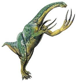 http://img3.wikia.nocookie.net/__cb20120818153347/dinosaurs/images/7/7b/Therizinosaurus-2.jpg