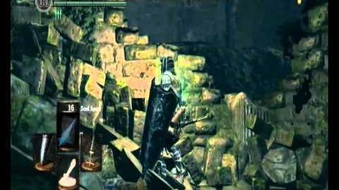 dark souls divine ember watchtower basement key location in
