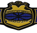 TCW* Intercontinental Championship