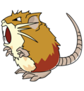 Raticate (anime SO).png
