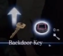 Backdoor Key (RE6)