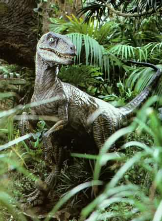 Jurassic Park Velociraptor FileJurassic bush raptor jpg