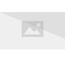 HP1jeu-Harry Potter - Chocogrenouille.jpg