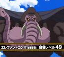 Elephant Kong