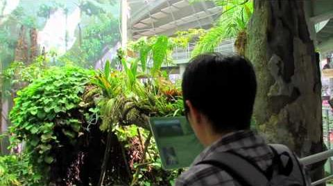 49 Seconds of the California Academy of Sciences