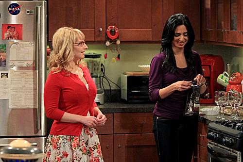 Priya Koothrappali - The Big Bang Theory Wiki