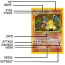 Card Info.SVG