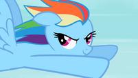 Rainbow Dash Stare 1 S2E07