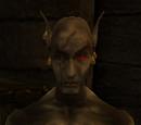 Morrowind: キャラクター
