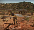The Watering Hole (episode)