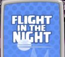 Flight in the Night