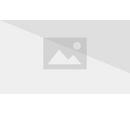 Cabane au sommet du rocher
