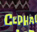 Cephalopod Lodge (transcript)