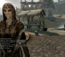 Skyrim: コンソールコマンド