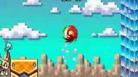 Sonic advance 3 glitch