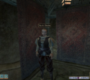 Mitglieder der Diebesgilde in Morrowind
