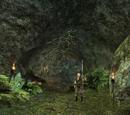 Jaskinia Ortegi