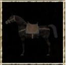 Black Desert Horse.jpg