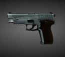 JAGD P22G