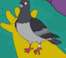 Raymond Bird