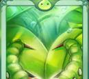 Rabong Card