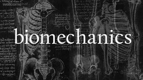 Bone biomechanics A Big Picture film by the Welcome Trust