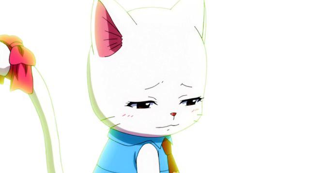 Talk:carla Fairy Tail Wiki