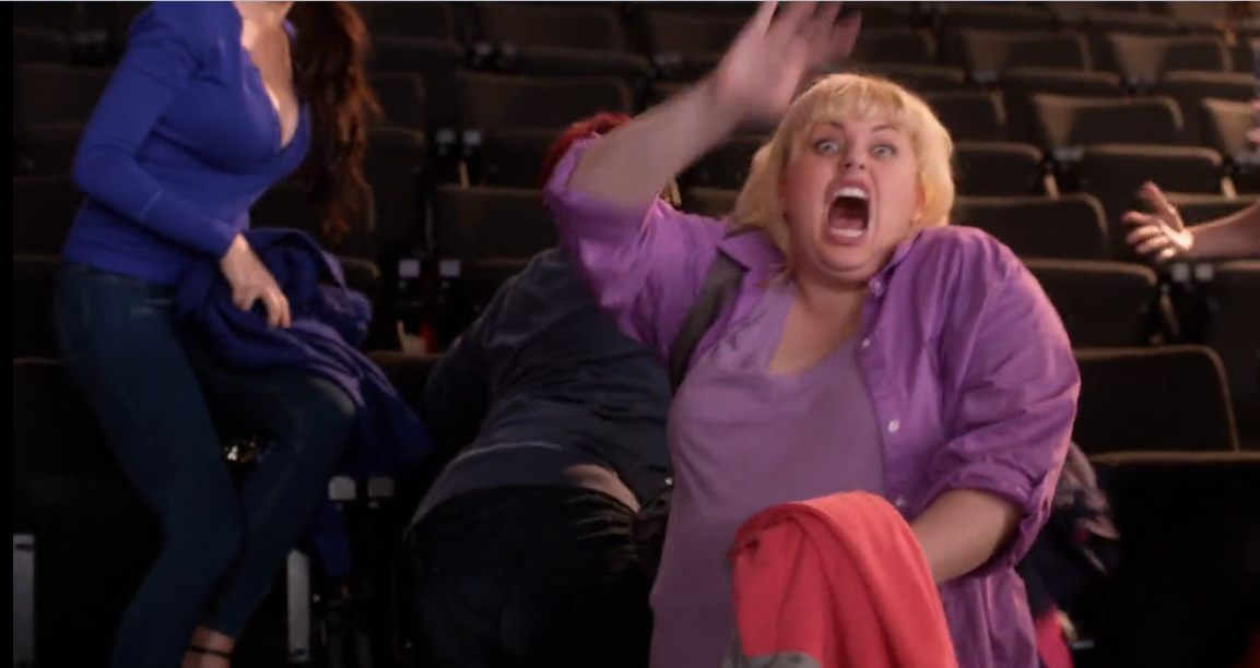 Fat amy pitch perfect nice