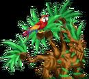 Dragon na Tropiko