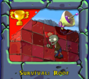 Survival: Roof