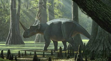 Styracosaurus Dinopedia The Free Dinosaur Encyclopedia