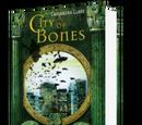 City of Bones (Begriffserklärung)
