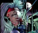 WildC.A.T.s Vol 1 27/Images